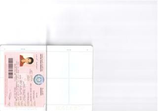 Soumya Parthiv new Visas.pdf