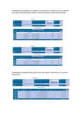 ANEXO PAGO REVISION CREDITO 2000330-1_CLIENTE 2000330 CASTIGADO.doc.docx