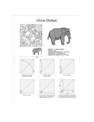 elephant by shuki kato.pdf