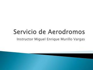 Servicio de aerodromos completo.pdf
