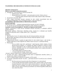 CURS TULB METABOLISM 5 2012-13.doc