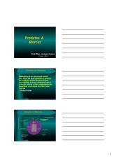 Produtos & Marcas Color.pdf
