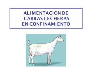 ALIMENTACION DE CABRAS LECHERAS EN CONFINAMIENTO.pdf
